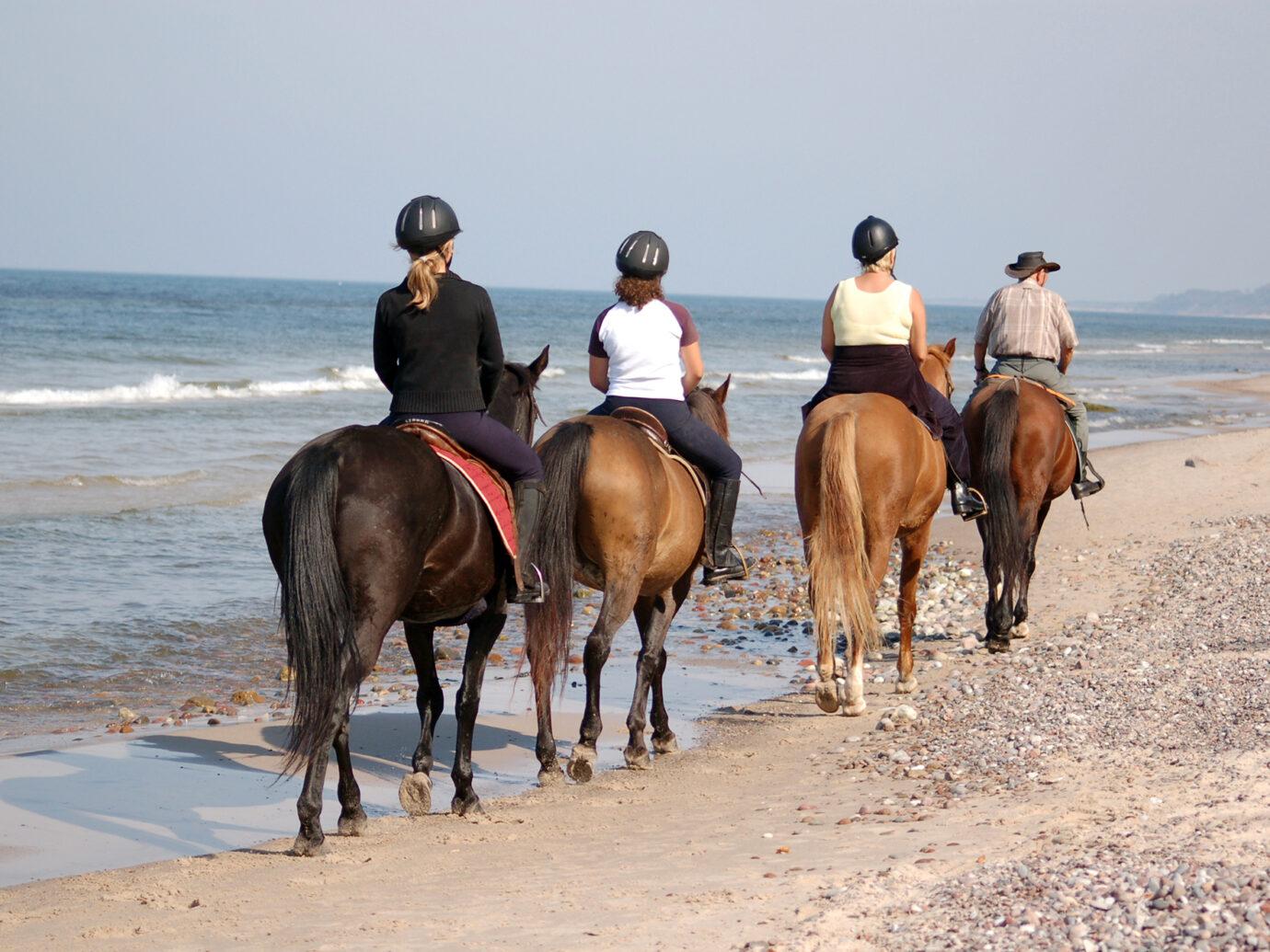 Beach horse-riding in summertime