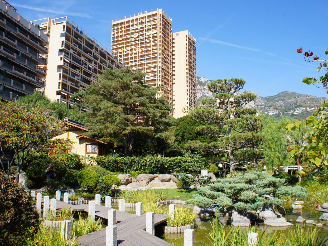 Japanese garden in Monaco landscape
