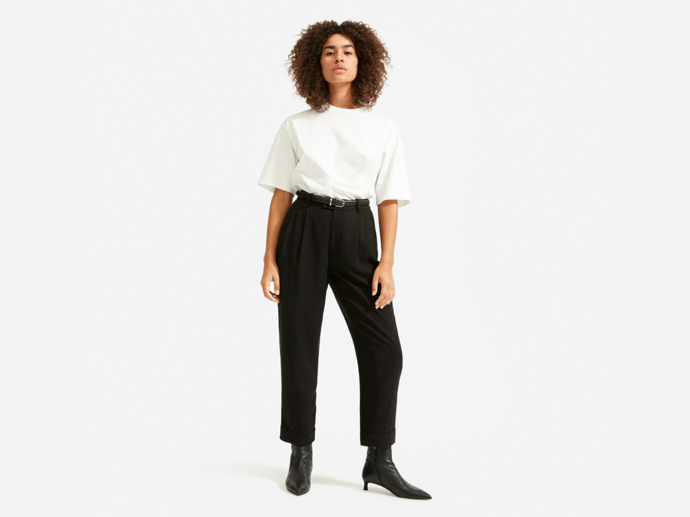 Everlane The Put-Together Pleat Pant