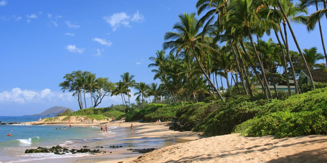 View of a beach in Maui