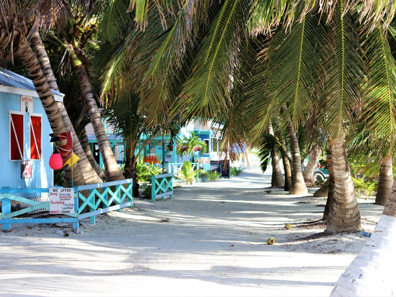 White sand streets of Caye Caulker, Belize