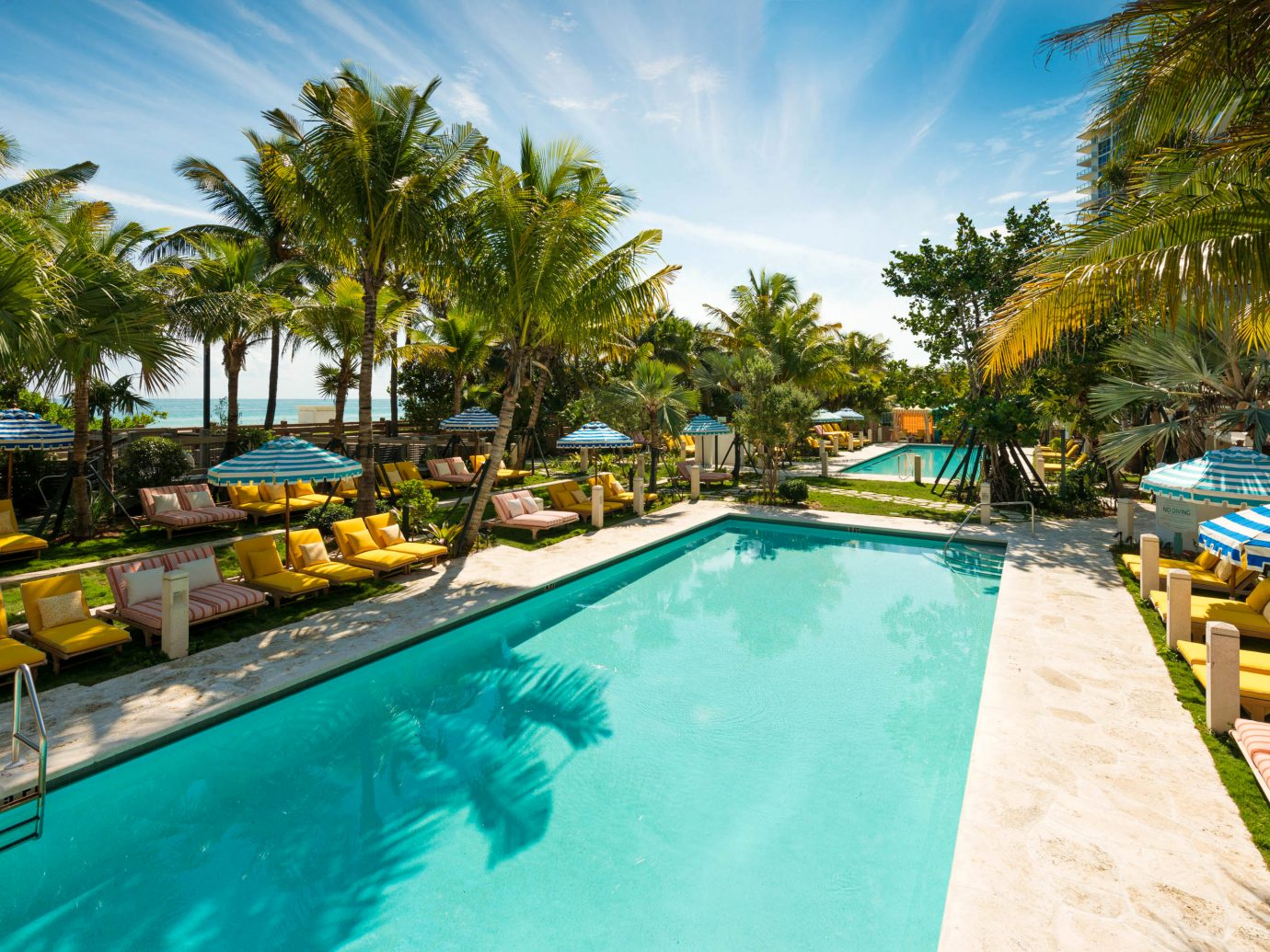 Pool at Confidante Miami Beach
