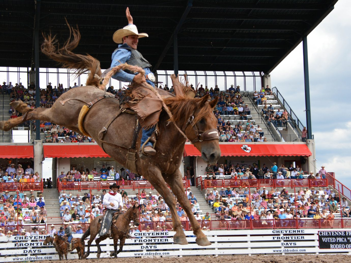 Trip Ideas Dog outdoor rodeo western riding sports traditional sport jumping equestrian sport animal sports barrel racing mammal event fair equestrianism pulling horse