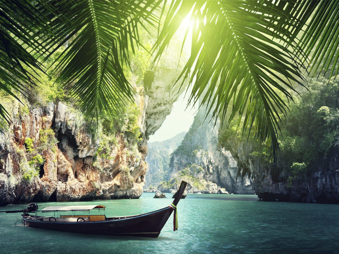 Offbeat water outdoor Boat green tree tropics plant Jungle arecales vehicle sunlight palm family rainforest palm