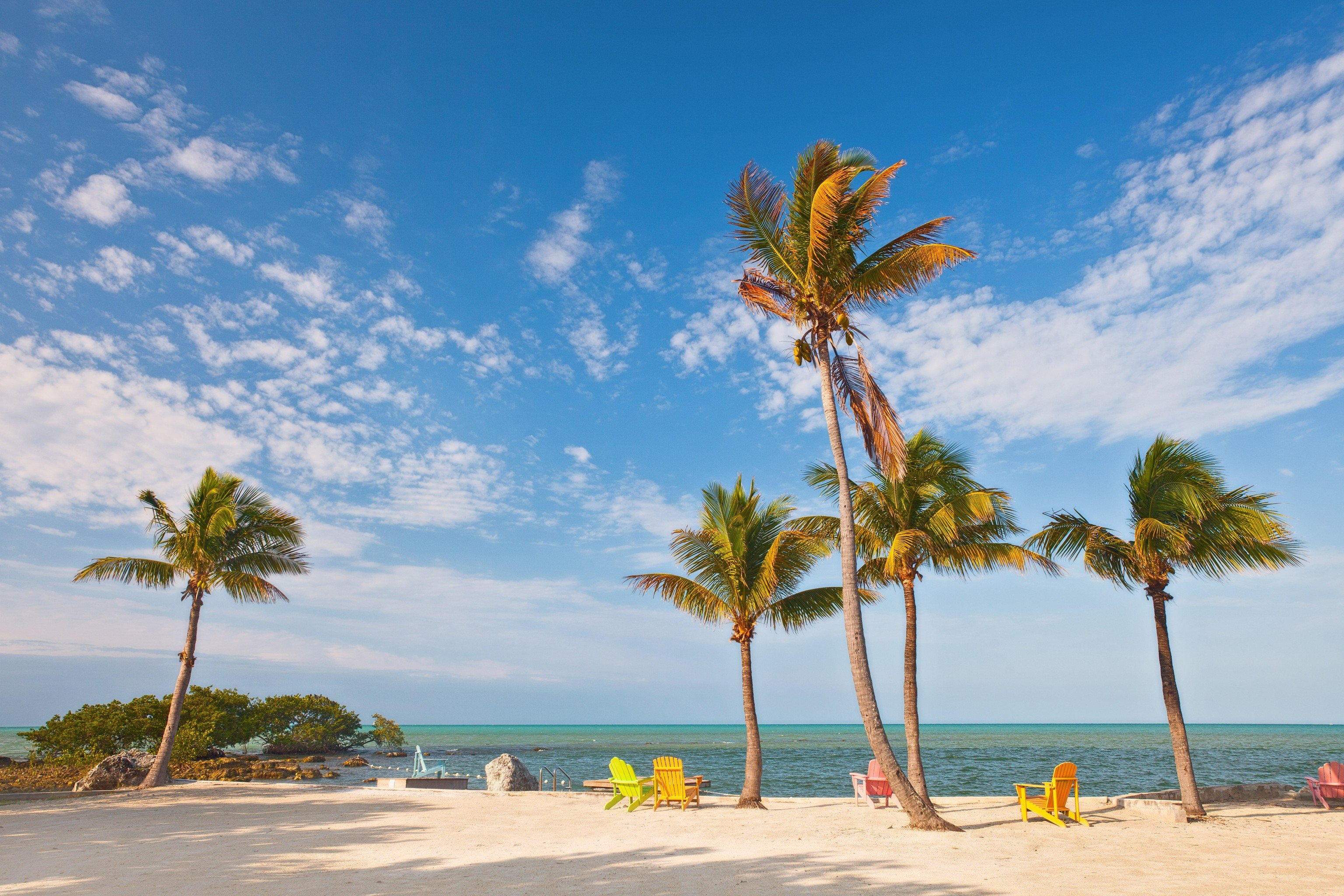 Trip Ideas sky tree outdoor water palm Beach shore body of water Sea Ocean caribbean vacation Coast palm family plant tropics arecales woody plant bay sand cape Island lined sandy