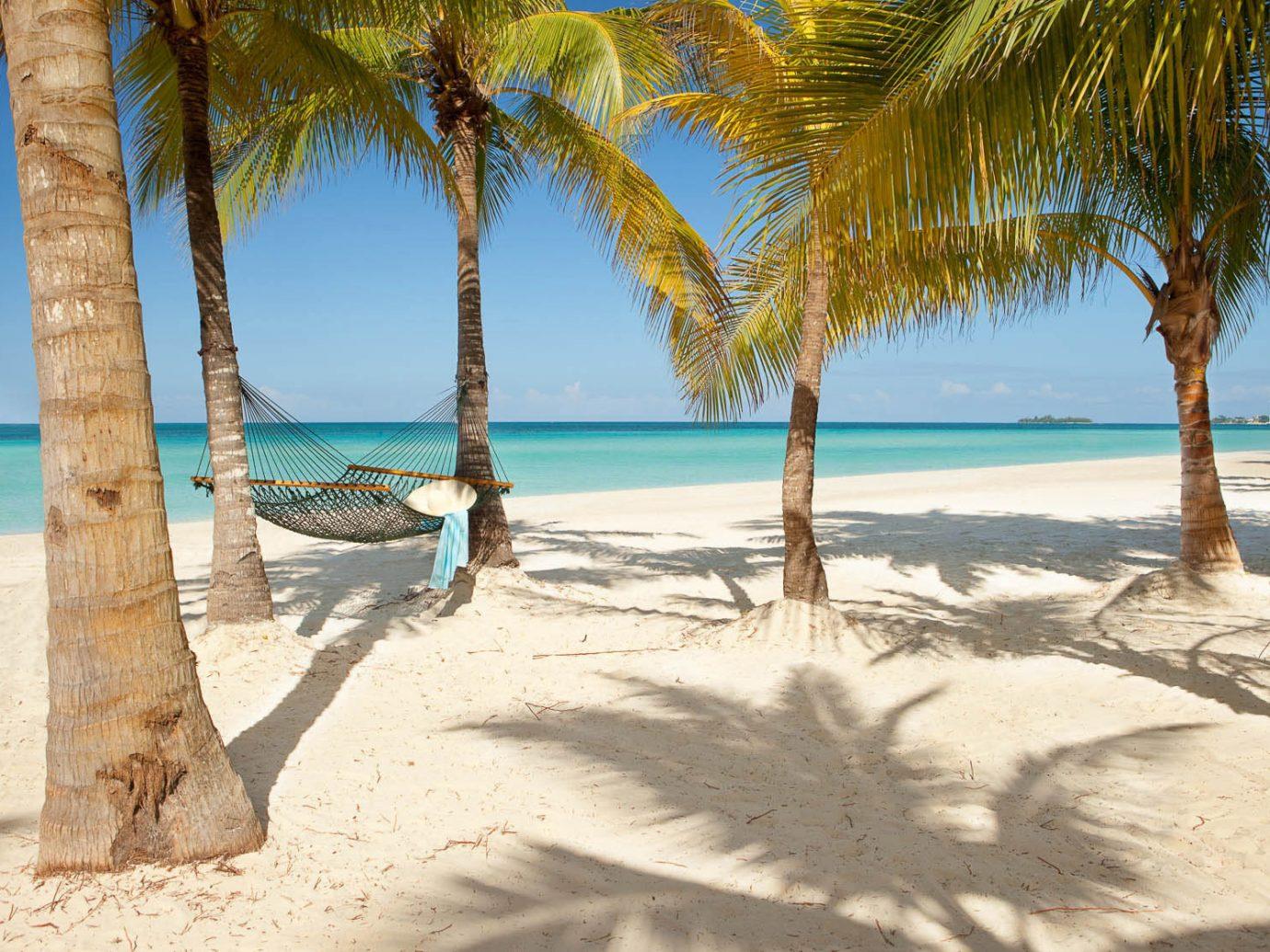 Hotels outdoor Beach water sky tree palm shore body of water Sea Ocean vacation caribbean sandy Nature sand arecales plant Coast tropics bay shade