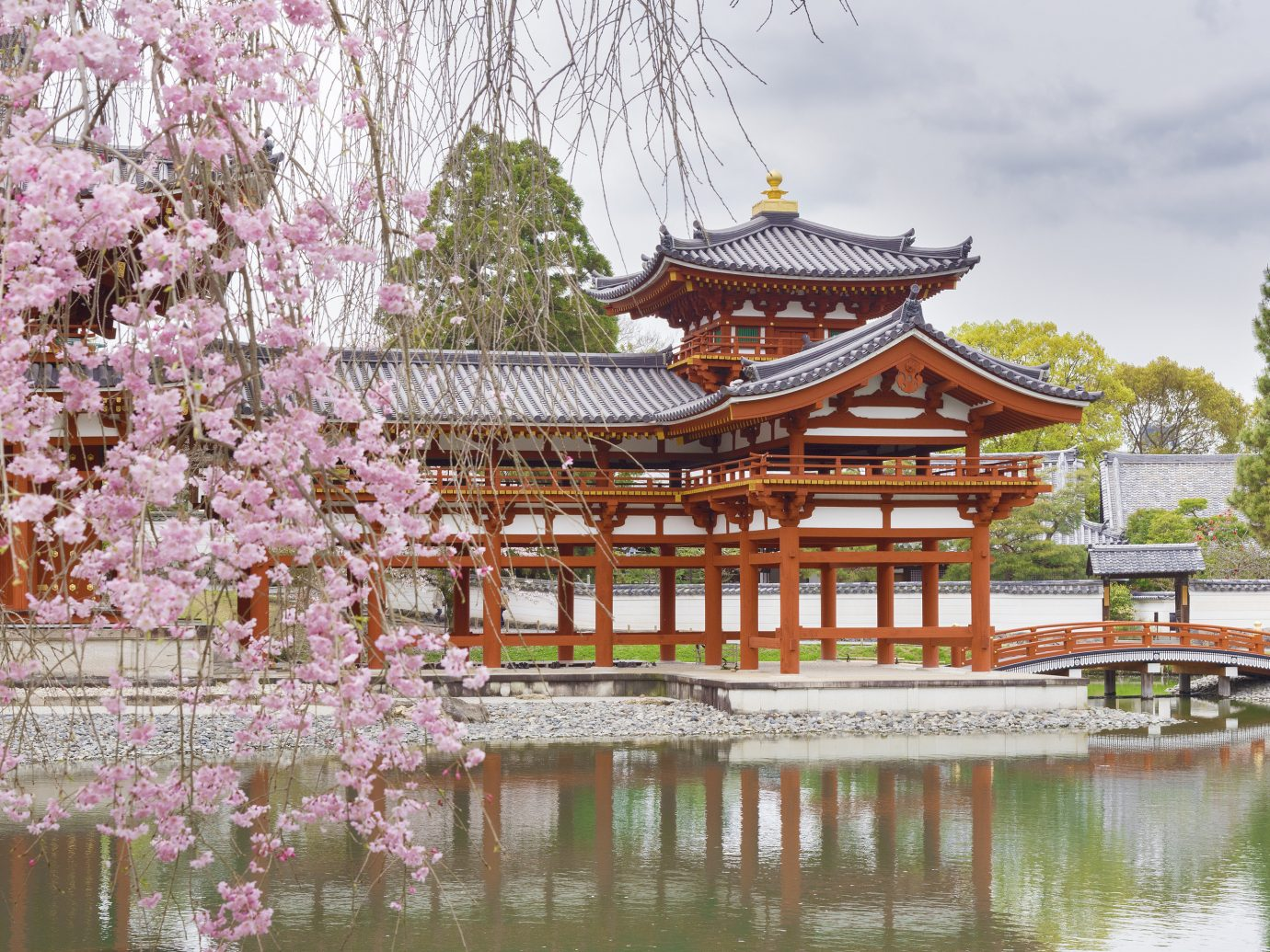 Japan Trip Ideas chinese architecture japanese architecture plant flower shinto shrine pagoda tree reflection cherry blossom outdoor structure temple pavilion shrine spring pond gazebo leisure
