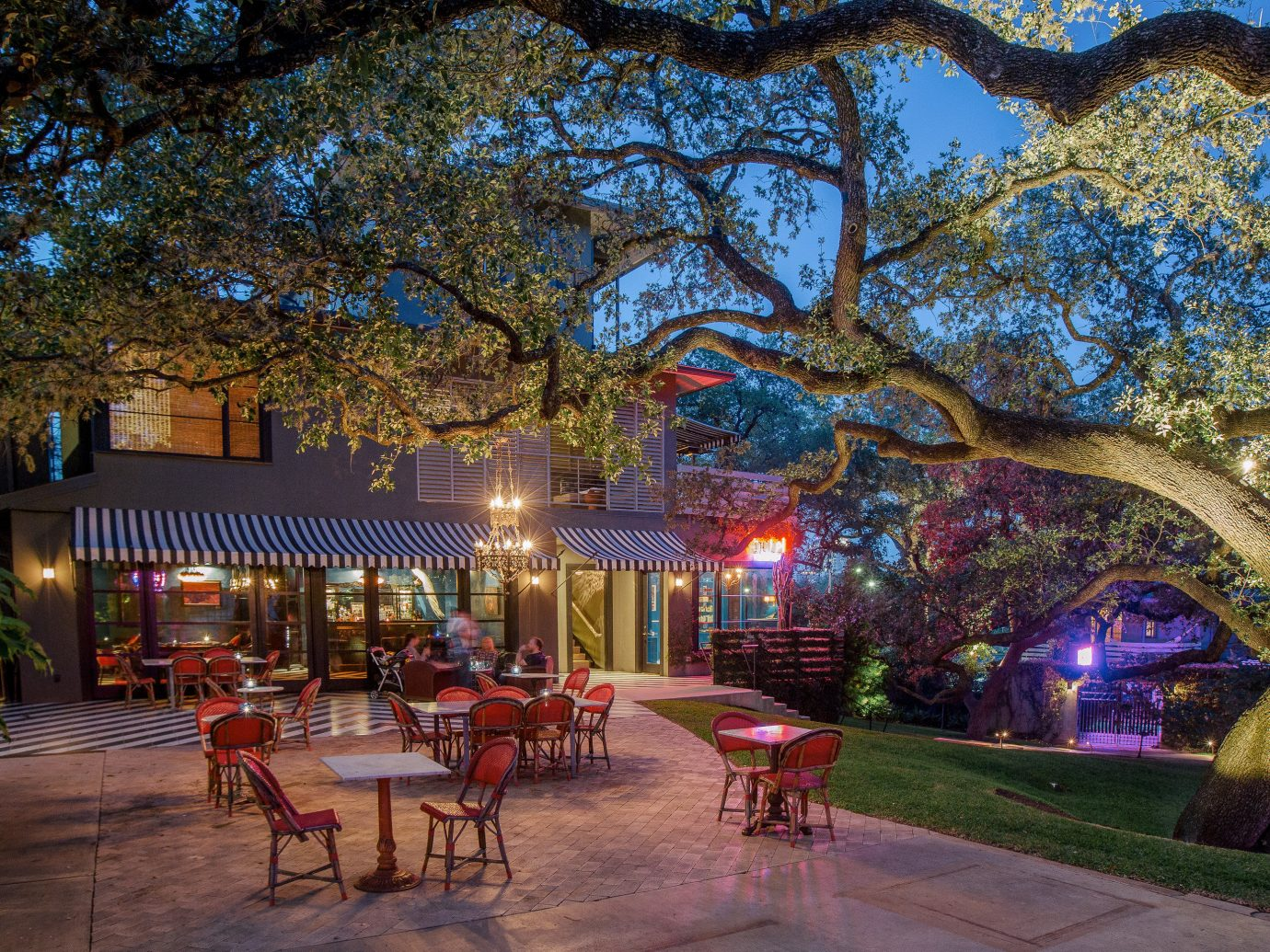 Hotels tree outdoor night estate evening flower Resort plant several
