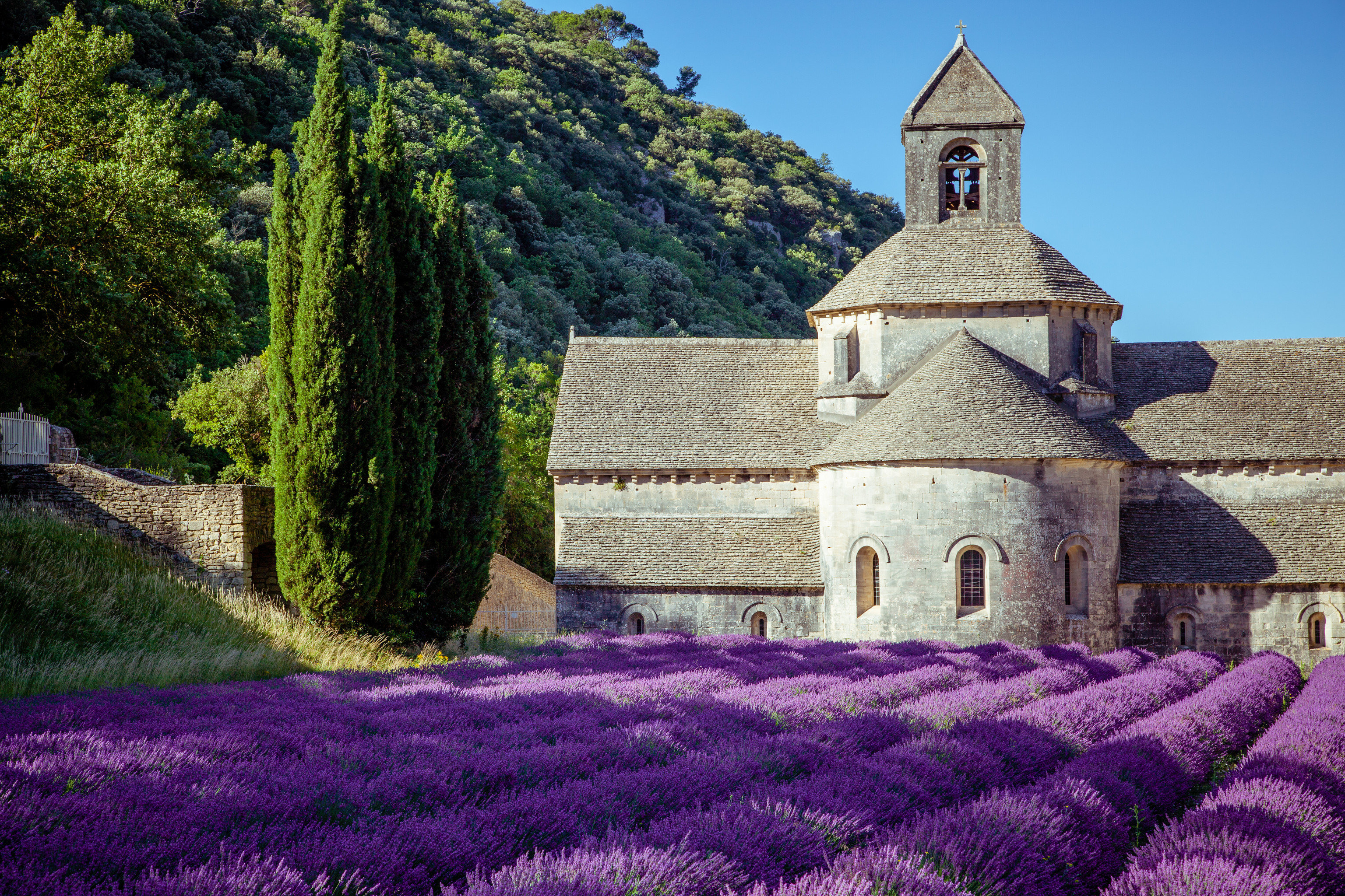 Trip Ideas grass tree outdoor flower building plant rural area stone Garden monastery place of worship