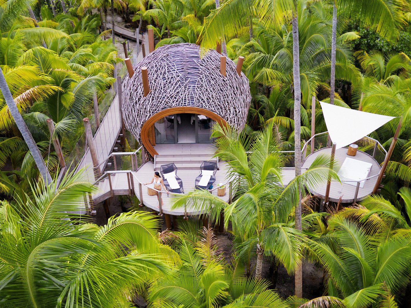 aerial Balcony calm Greenery Hotels hut isolation lounge chairs Luxury Luxury Travel open-air palm trees Patio private remote serene Terrace Tropical tree habitat outdoor natural environment ecosystem Resort botany Jungle rainforest Garden tropics arecales Forest flower botanical garden plant surrounded lush