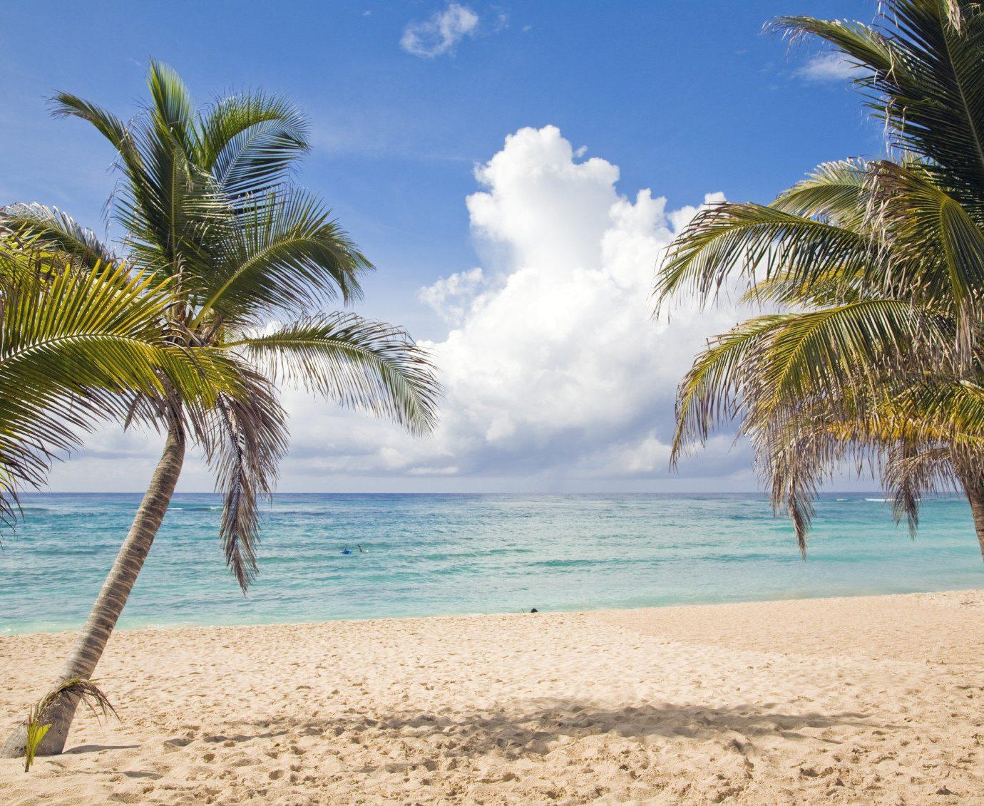 All-Inclusive Resorts Hotels Romance Trip Ideas outdoor tree palm Beach sky water plant shore body of water Sea vacation caribbean Ocean palm family tropics arecales woody plant Coast sand sandy bay Lagoon shade