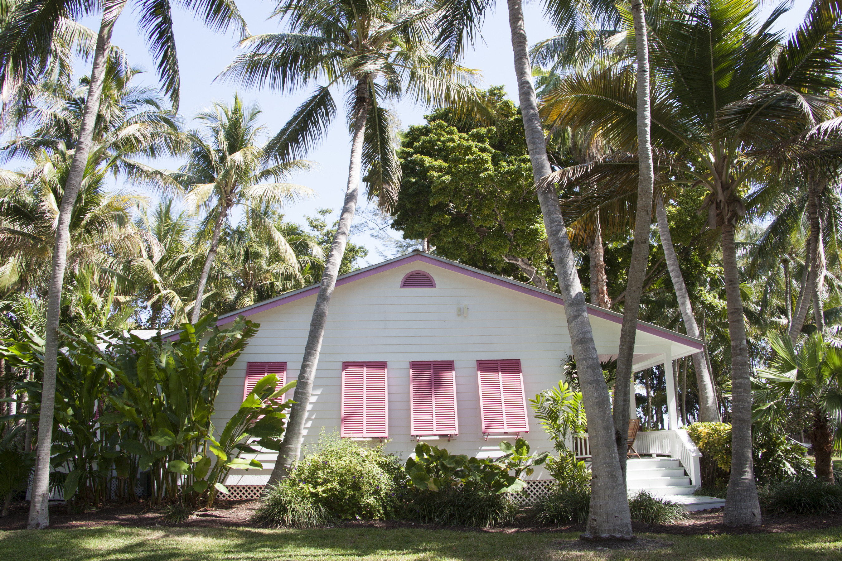 Hotels Romance tree outdoor plant property cottage house home arecales palm palm tree Resort real estate plantation estate Villa tropics vacation area