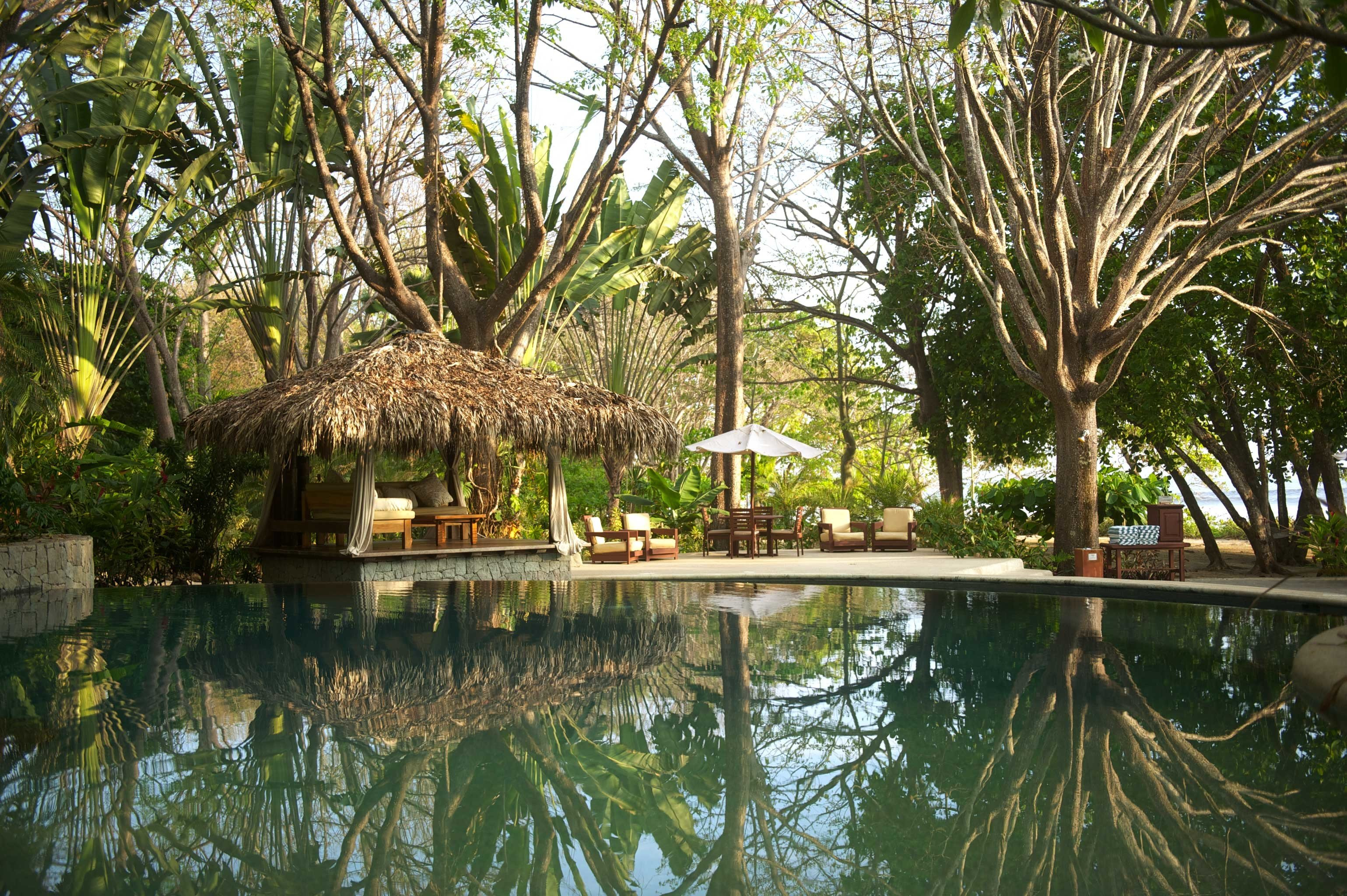 Hip Hotels Living Lounge Luxury Pool tree outdoor property Resort botany estate arecales swimming pool palm Jungle pond Garden eco hotel plant Villa area shade