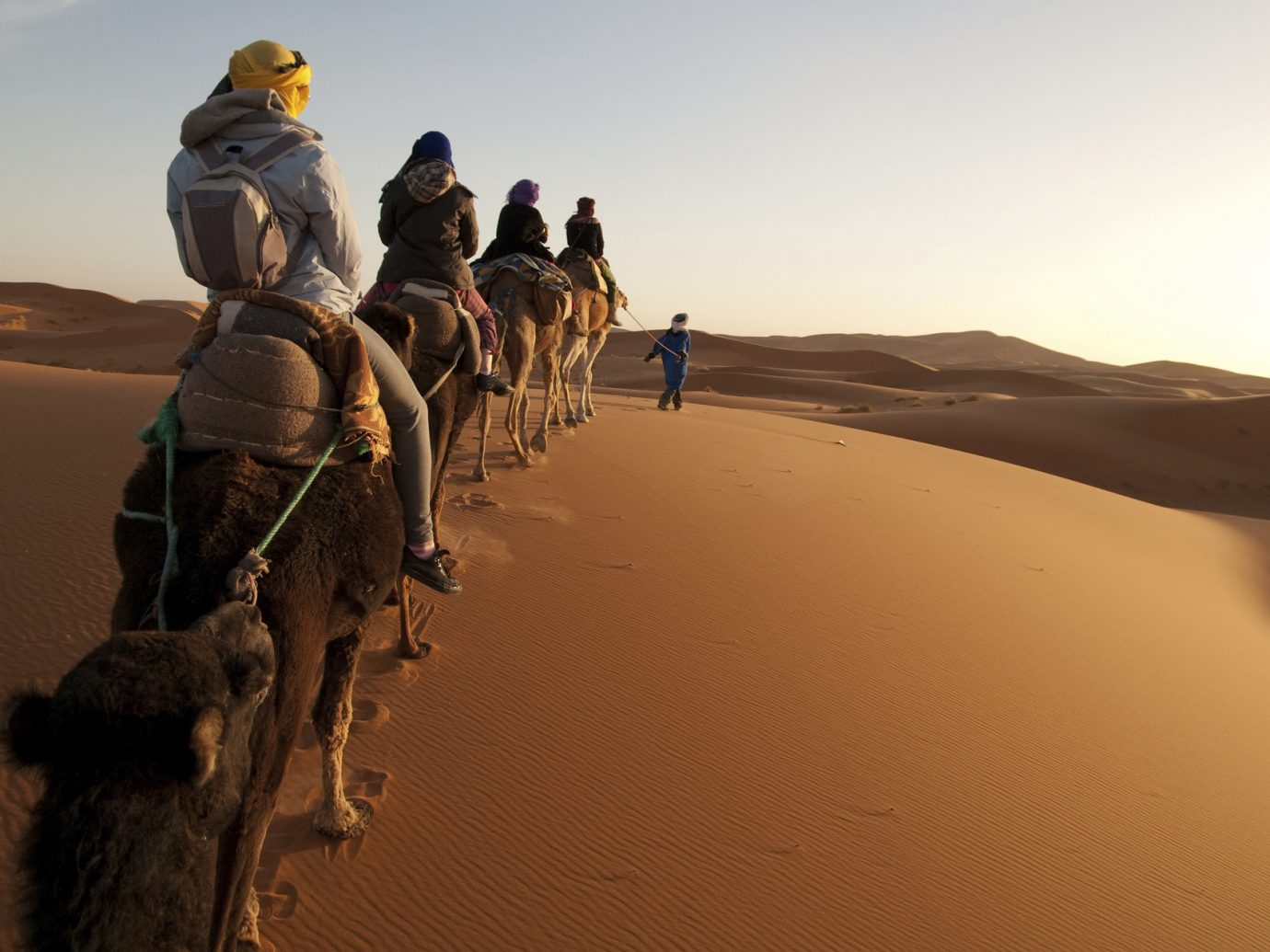 Trip Ideas sky outdoor sahara natural environment landform erg Camel Desert geographical feature riding aeolian landform landscape sand wadi camel like mammal Nature camel racing people arabian camel