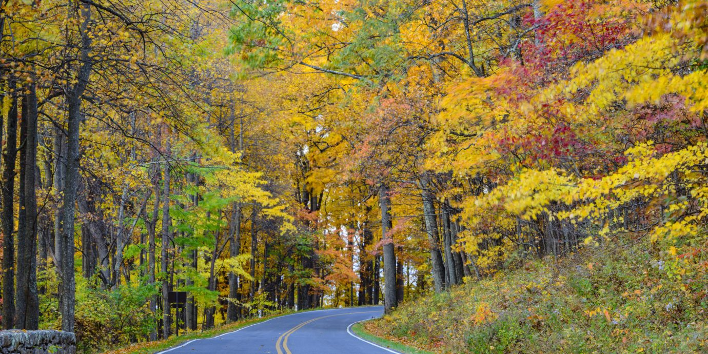 7 Best Fall Road Trips for a Girls\' Getaway