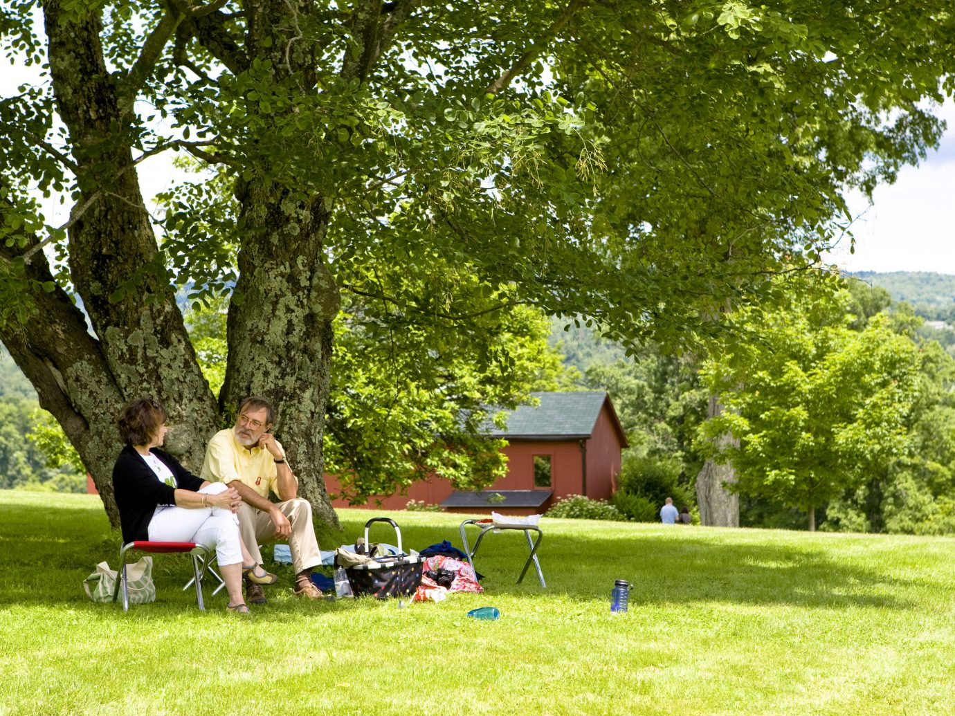 Picnic in The Berkshires, Massachusetts
