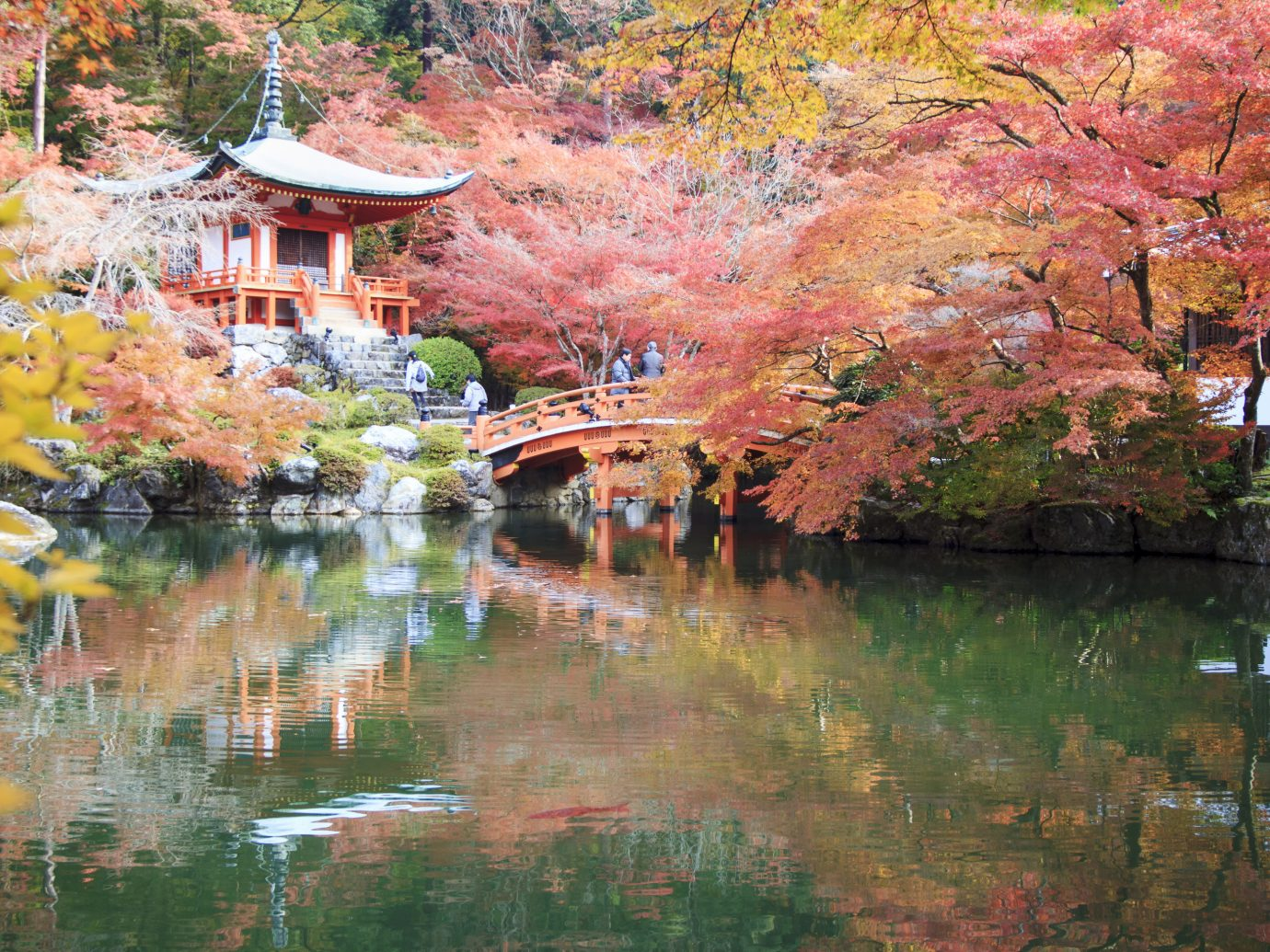 Trip Ideas outdoor tree Nature reflection water plant leaf autumn waterway pond pagoda spring maple tree flower cherry blossom tourist attraction watercourse landscape bank branch Lake temple surrounded area