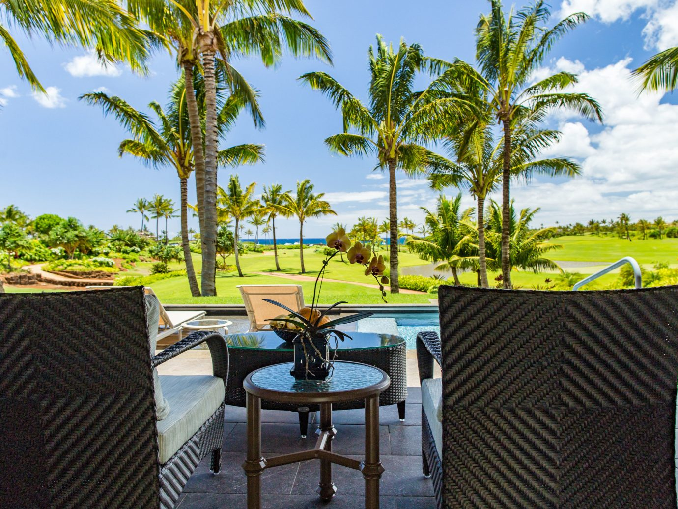Hotels lawn lounge chairs outdoor lounge palm trees Patio remote Romance Scenic views Terrace Tropical view tree sky outdoor palm chair property Resort estate vacation Villa real estate backyard