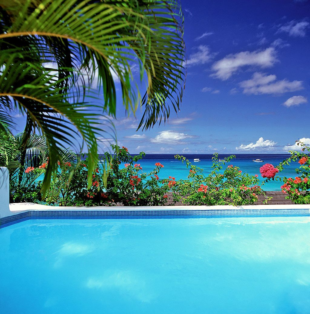 Beach Beachfront Country Cultural Elegant Island Patio Pool Scenic views Trip Ideas Waterfront swimming pool palm caribbean Ocean vacation tropics Sea arecales Resort Lagoon bay palm family atoll plant colorful