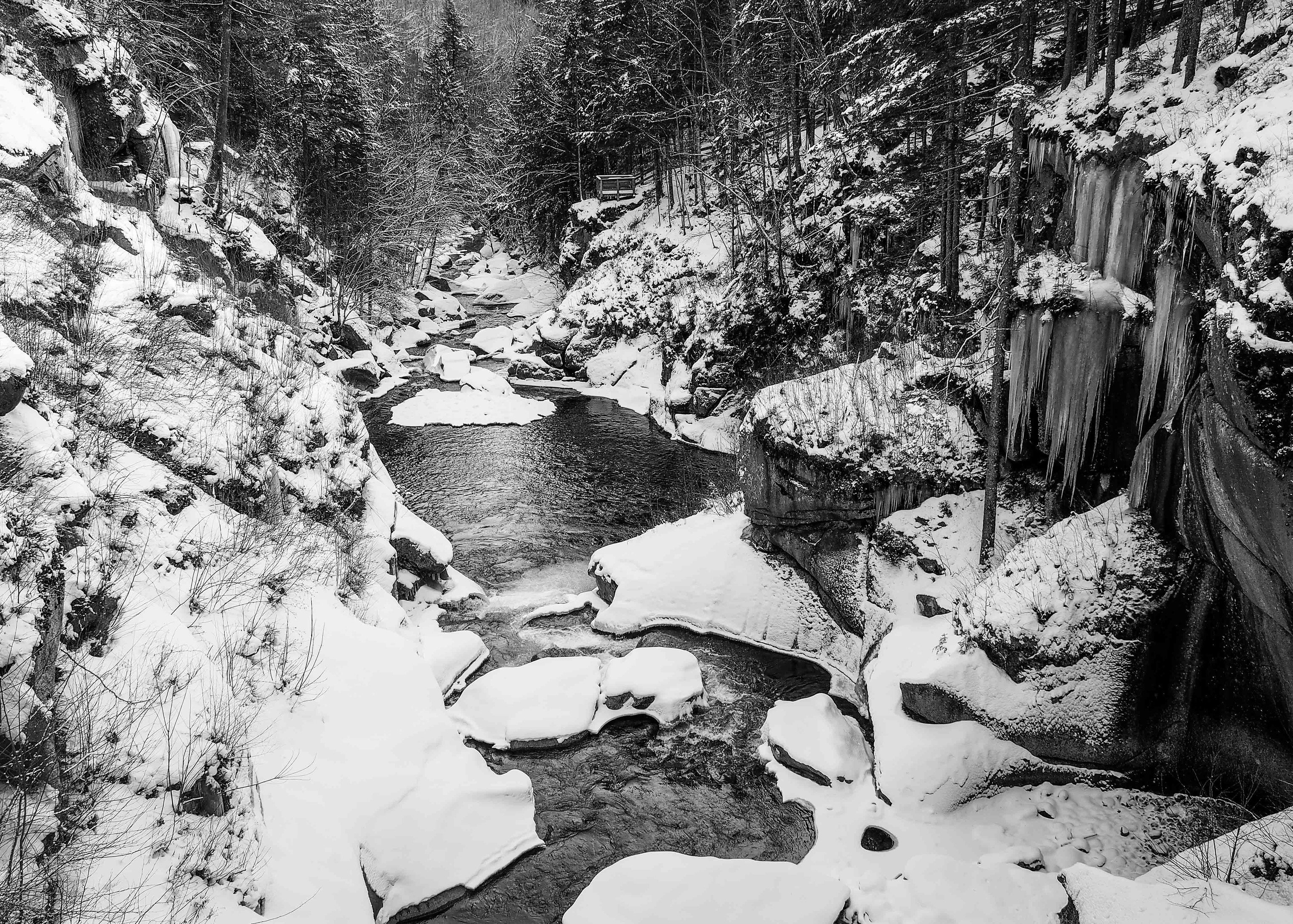 alpine skiing East Coast USA Trip Ideas tree outdoor water snow Nature Winter black and white freezing monochrome photography leaf stream geological phenomenon reflection monochrome watercourse ice rock landscape geology woodland Forest plant conifer fluvial landforms of streams creek River branch