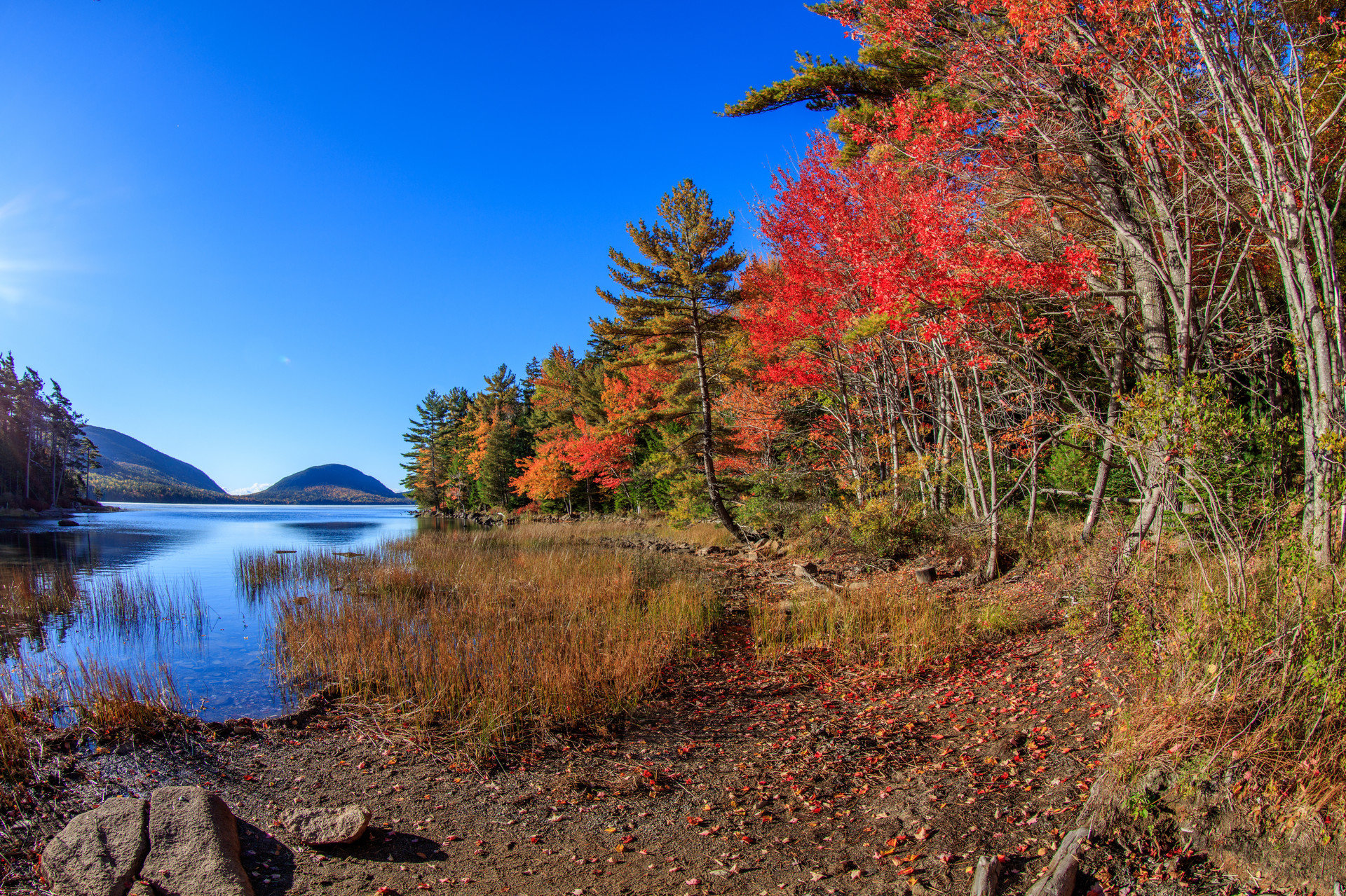 Boutique Hotels Fall fall colors Fall leaves fall season Food + Drink Forest Hotels landscape Mountains Natural wonders Nature Outdoors + Adventure reflection River shore trees Weekend Getaways woods outdoor tree sky grass wilderness ecosystem season autumn leaf mountain Lake morning plant woodland pond flower bushes hillside surrounded wooded highland