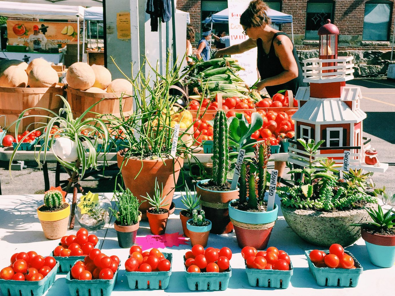 Trip Ideas outdoor local food produce plant marketplace floristry flower market vegetable flowering plant vendor greengrocer food natural foods flowerpot fruit stall whole food floral design fresh