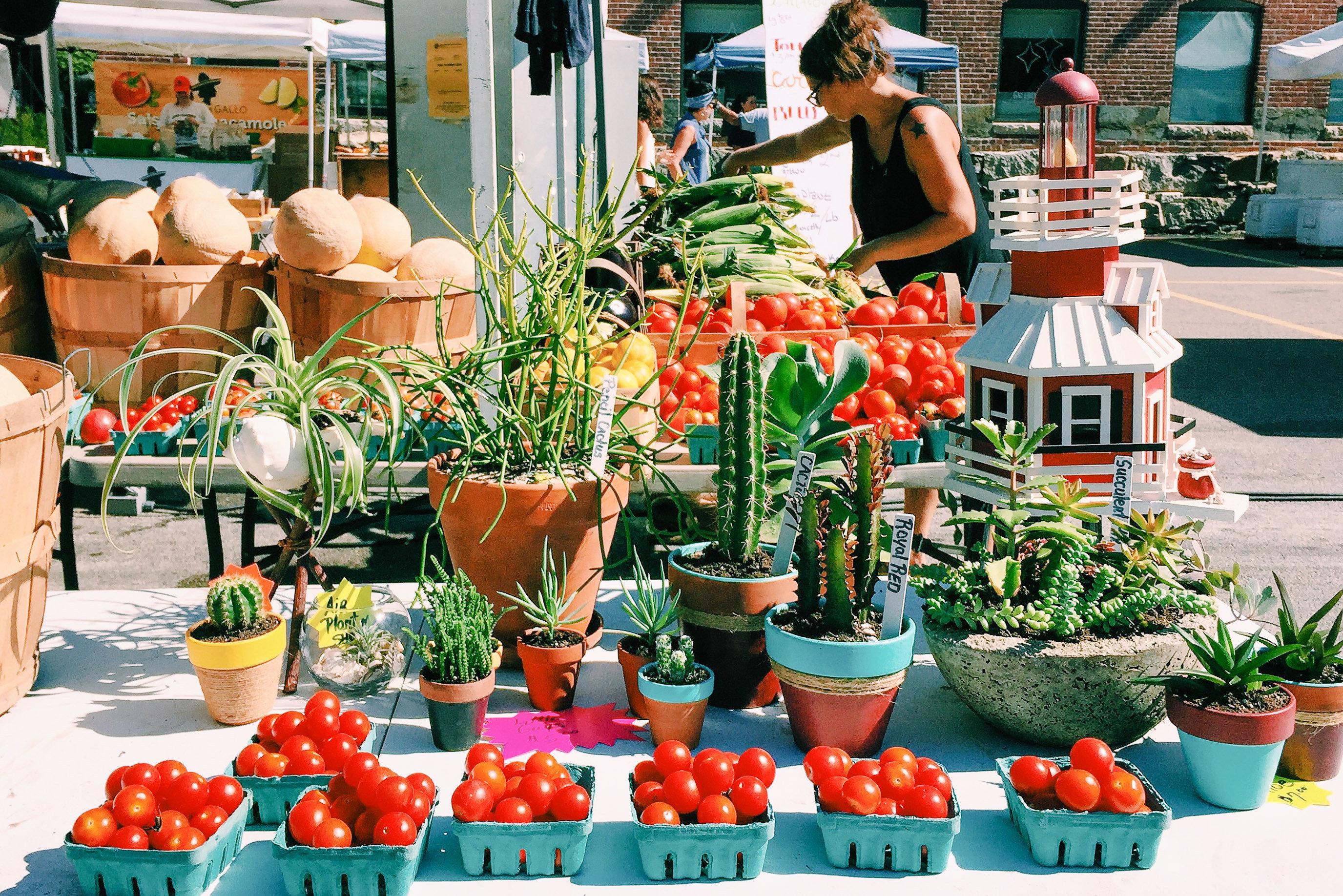 Trip Ideas outdoor local food produce plant marketplace floristry flower market vegetable flowering plant vendor greengrocer food natural foods flowerpot fruit stall whole food floral design fresh