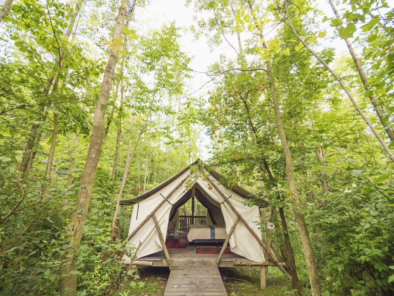 Glamping Outdoors + Adventure Weekend Getaways tree outdoor Nature nature reserve woodland path vegetation ecosystem building Forest leaf plant Jungle old growth forest rainforest wood biome cottage hut grass outdoor structure grove trail house temperate broadleaf and mixed forest wooded surrounded