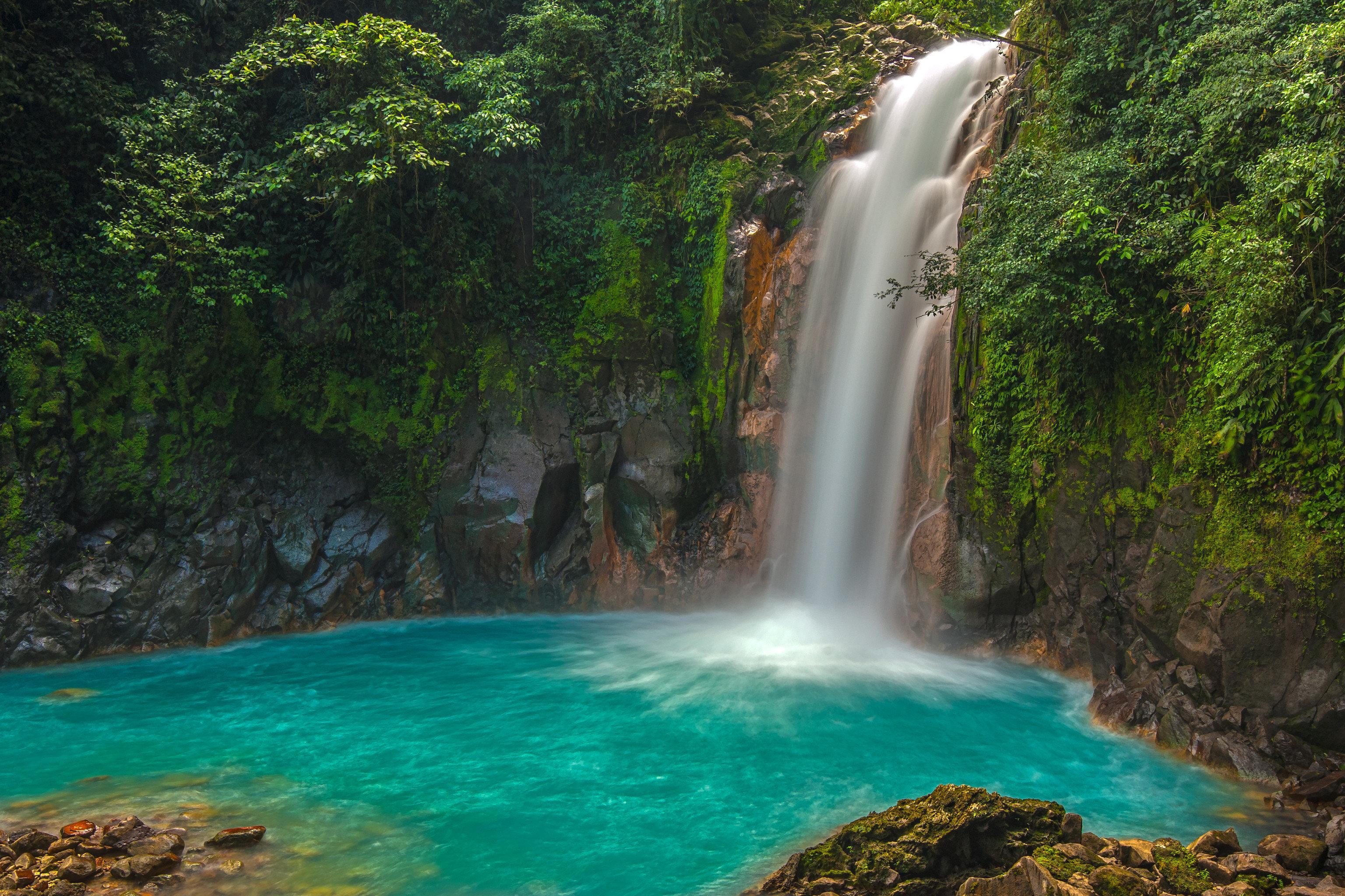 Offbeat Trip Ideas tree Nature water outdoor Waterfall body of water water feature watercourse wasserfall rainforest Jungle