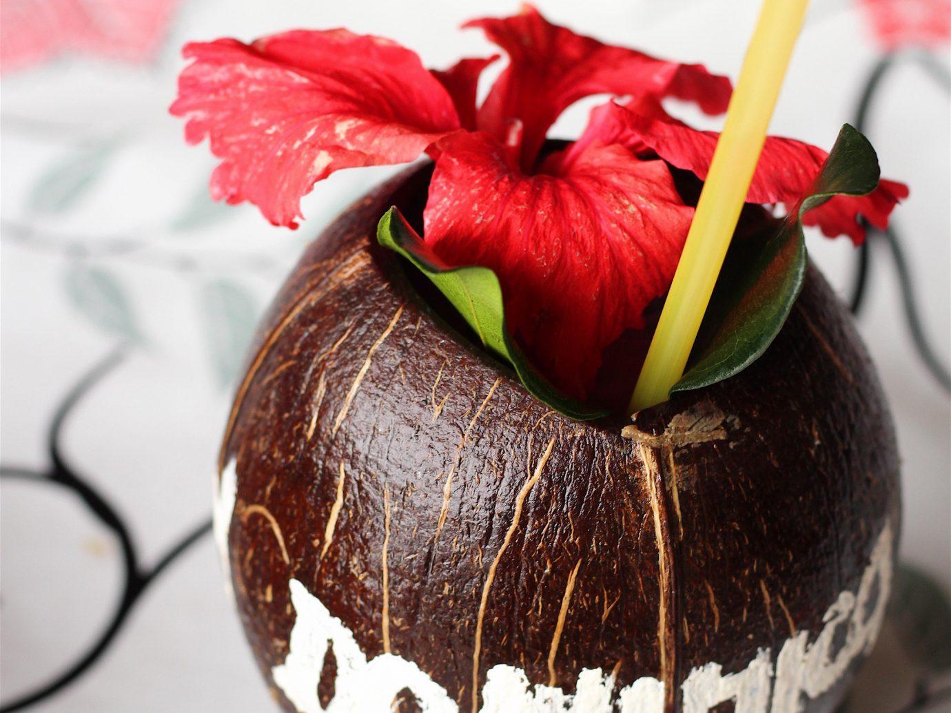 Trip Ideas plant food produce decorated dessert flavor
