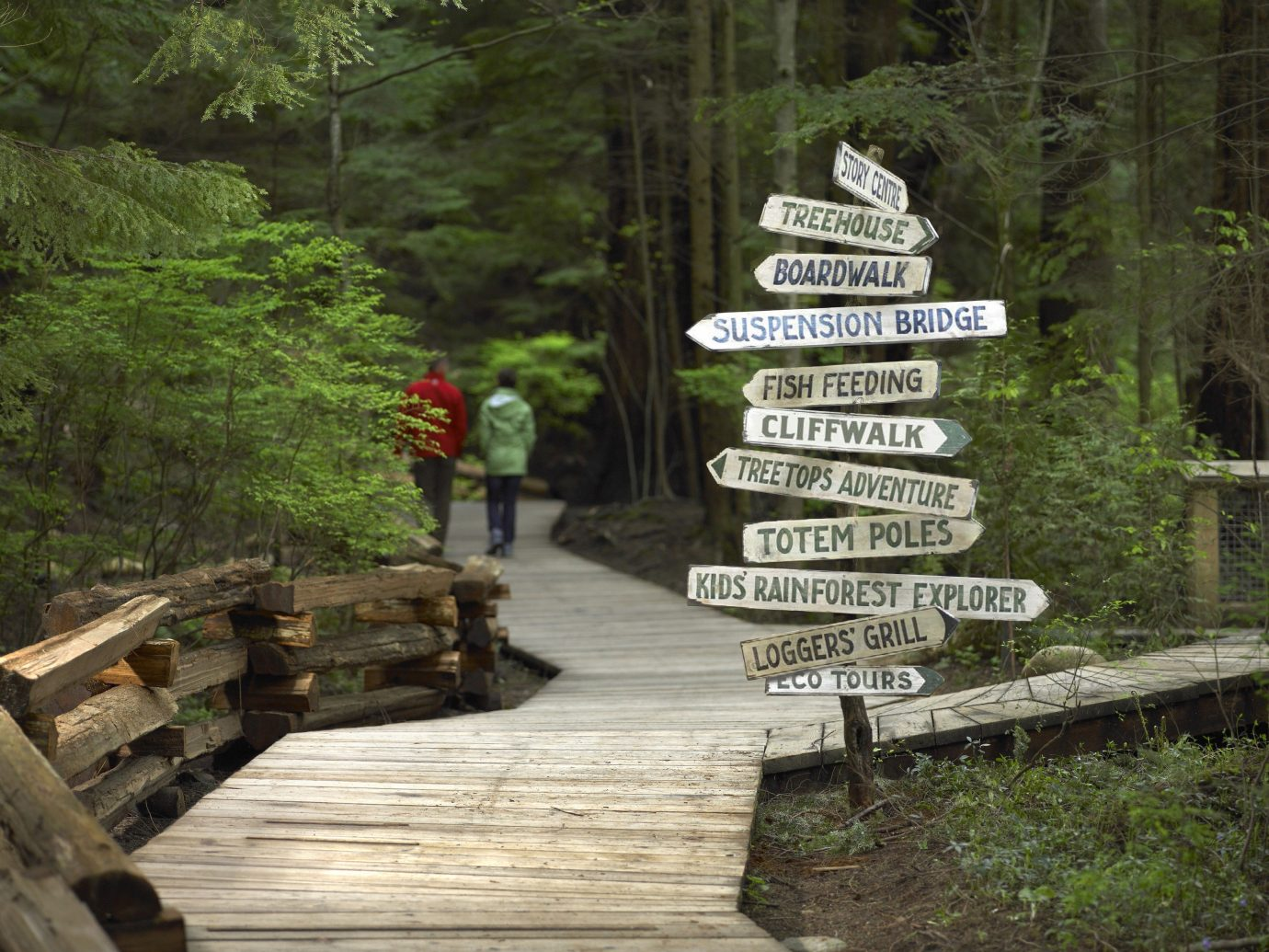 Trip Ideas tree outdoor sign trail wooden park wood plant Forest wooded stone