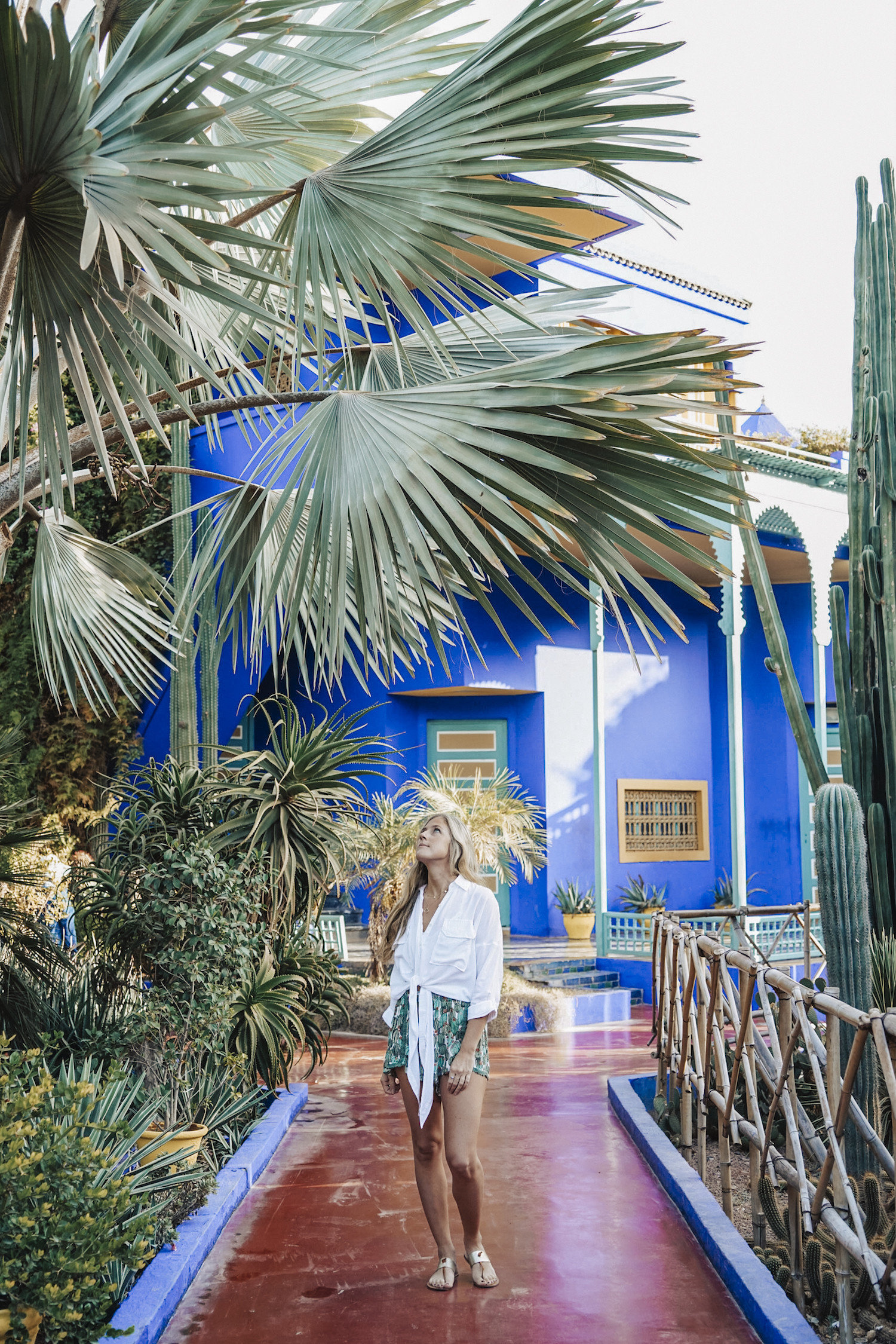 Morocco Packing Tips Style + Design Travel Shop majorelle blue arecales palm tree tree plant water vacation leisure tropics Resort tourism recreation