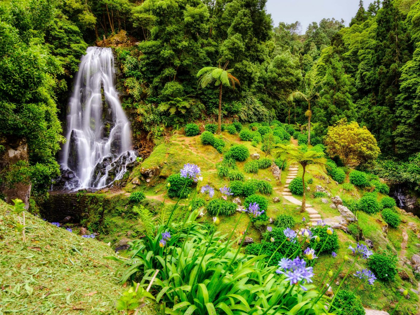 Trip Ideas tree Nature grass outdoor water vegetation Waterfall green body of water nature reserve botanical garden flora watercourse leaf water feature plant Garden landscape biome rainforest stream old growth forest water resources moss Forest non vascular land plant Jungle lush