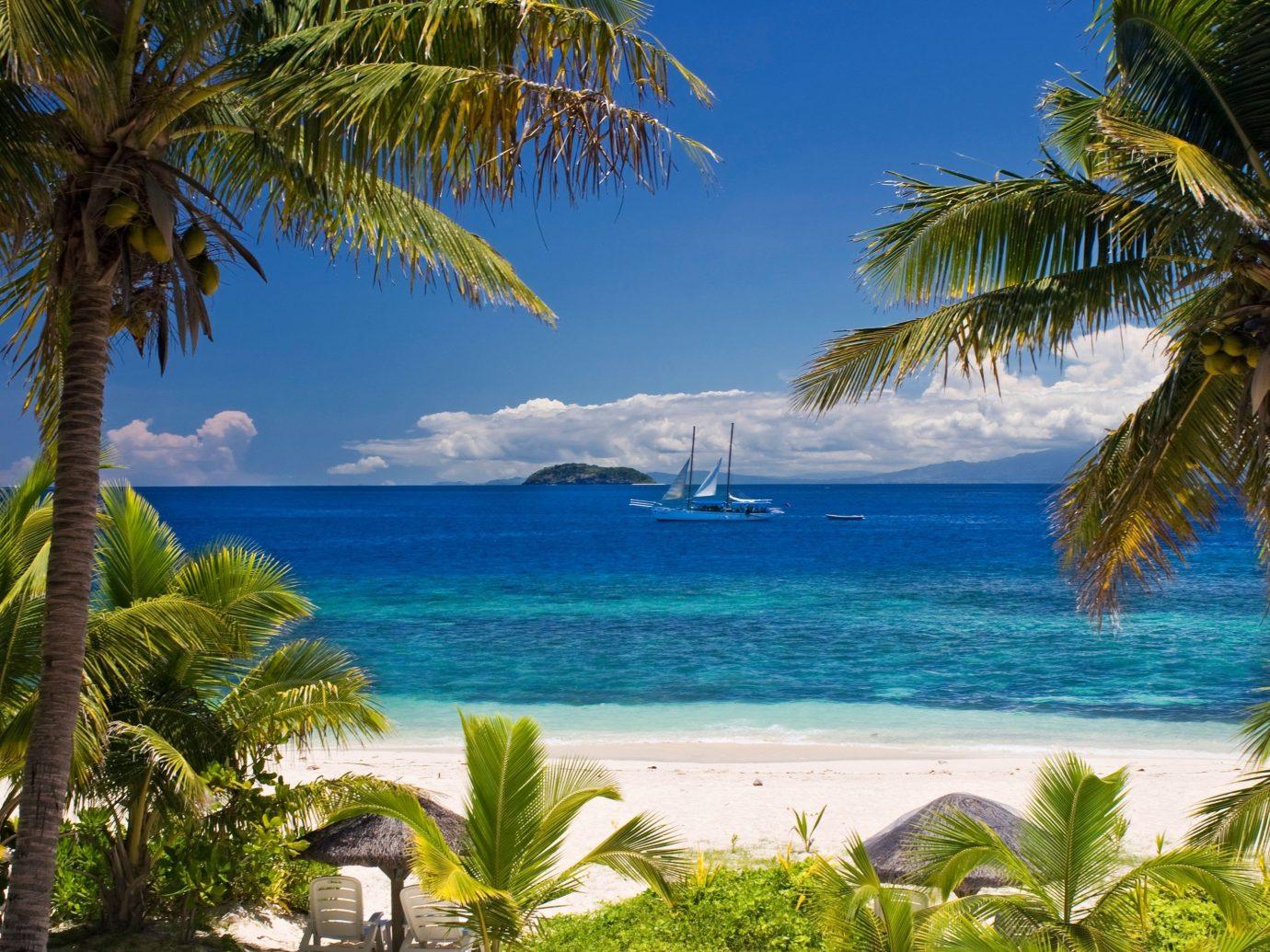 tree palm outdoor water Beach caribbean Ocean vacation body of water Sea tropics Coast Pool Resort palm family arecales bay Lagoon plant estate Island shade lined cape sandy shore