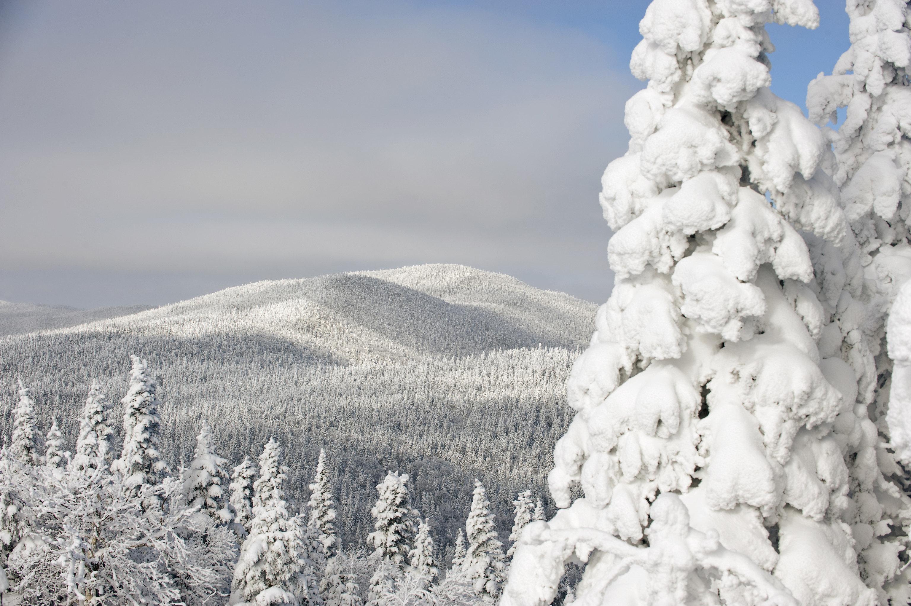 alpine skiing East Coast USA Mountains + Skiing Trip Ideas outdoor snow mountainous landforms Winter mountain landform weather geological phenomenon season ridge freezing mountain range summit plateau frost