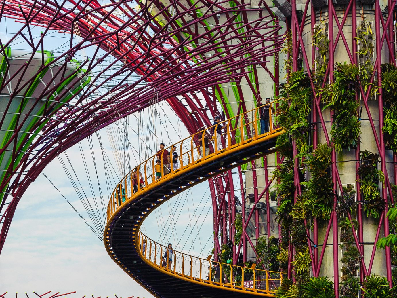Offbeat Singapore Trip Ideas outdoor sky bridge flower flora tree plant botany Garden floristry arecales leaf branch arch park botanical garden Jungle outdoor object outdoor structure amusement park roller coaster ride