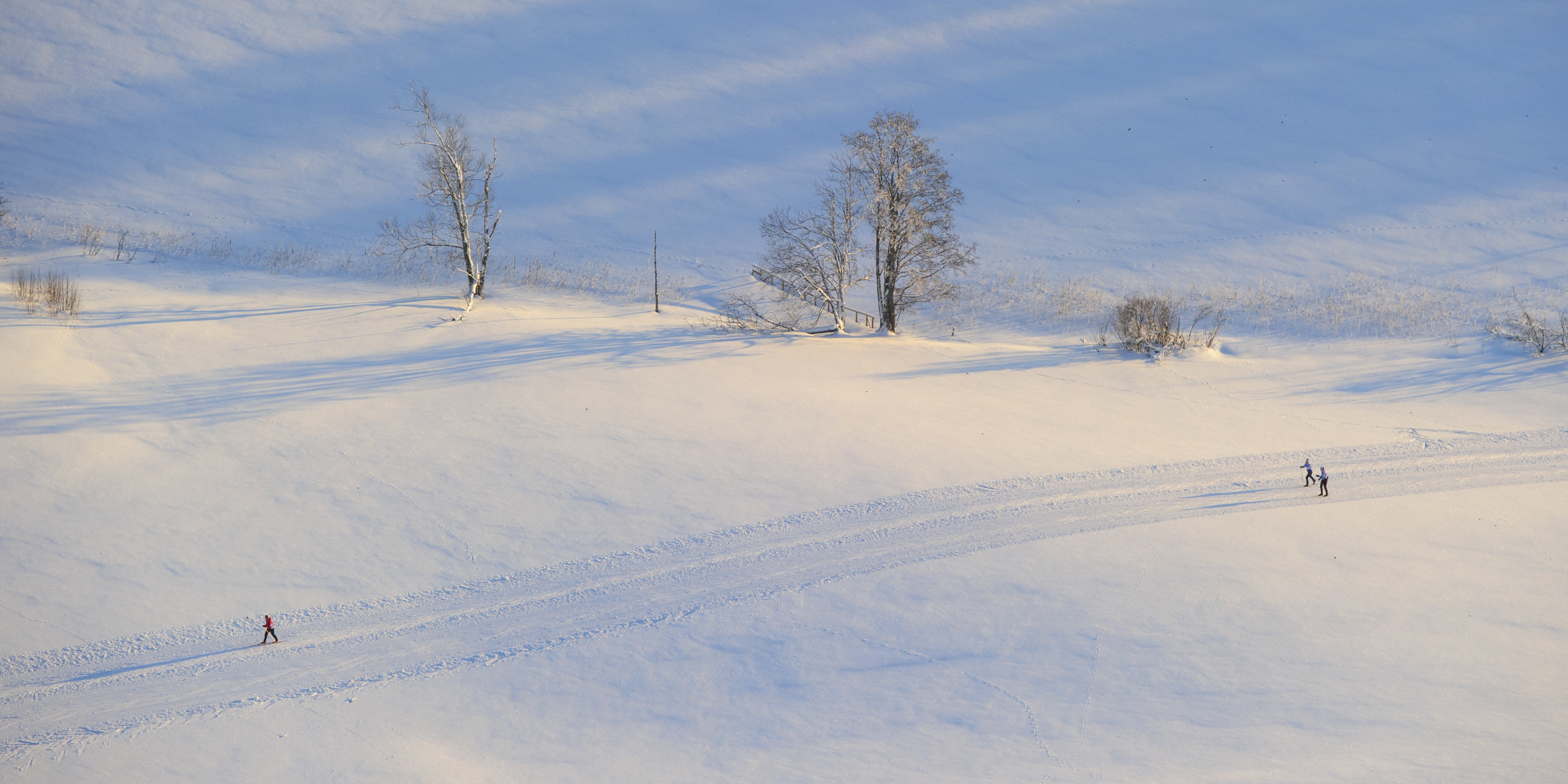 Offbeat snow outdoor sky skiing Winter covered Nature weather piste season geological phenomenon freezing mountain slope hill blizzard ski slope day fresh