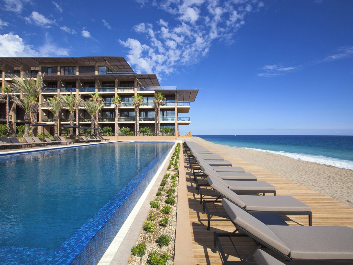 Pool and ocean view at JW Marriott Los Cabos
