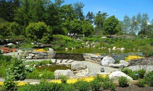 Road Trips Trip Ideas tree grass outdoor sky rock pond Garden watercourse landscape architect landscape backyard fish pond landscaping plant surrounded