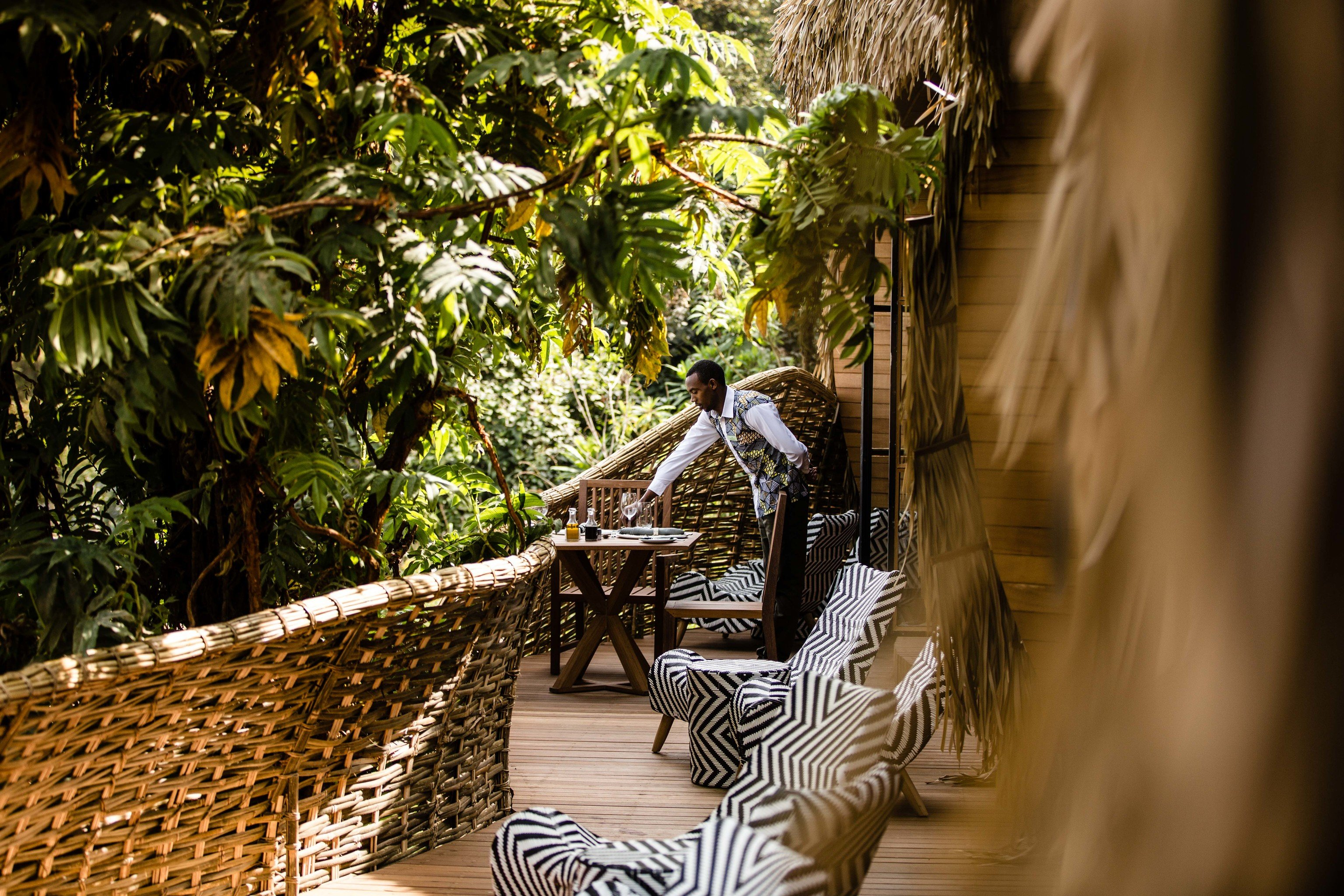 Boutique Hotels Hotels Luxury Travel tree outdoor plant arecales Jungle palm tree recreation rainforest