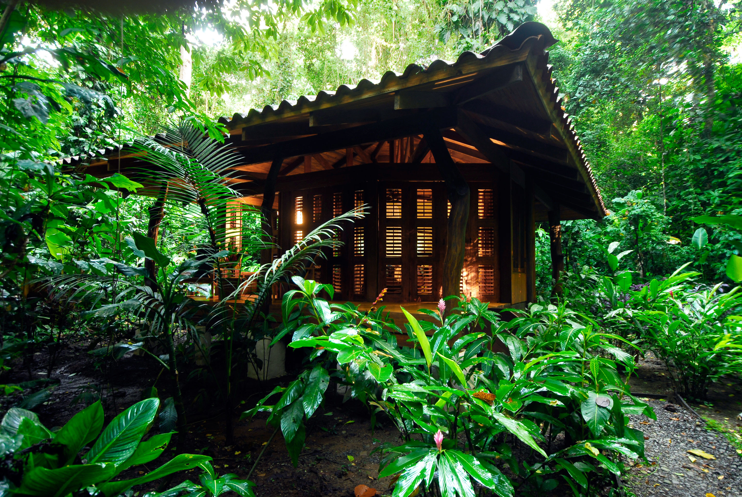 Adventure All-inclusive Budget Eco Exterior Grounds Honeymoon Jungle Outdoor Activities Outdoors Romantic Rustic tree outdoor habitat plant green natural environment rainforest Forest Garden botany woodland tropics house flower hut shrine wood bushes shade surrounded stone