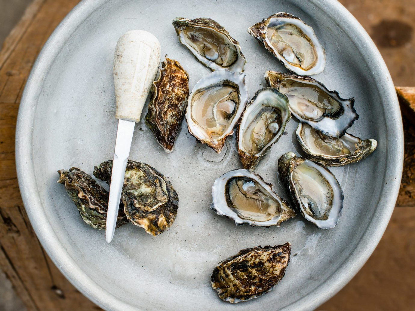 Trip Ideas plate oyster food Seafood clams oysters mussels and scallops oysters rockefeller animal source foods mussel dish slice clam recipe edible seed sliced meal