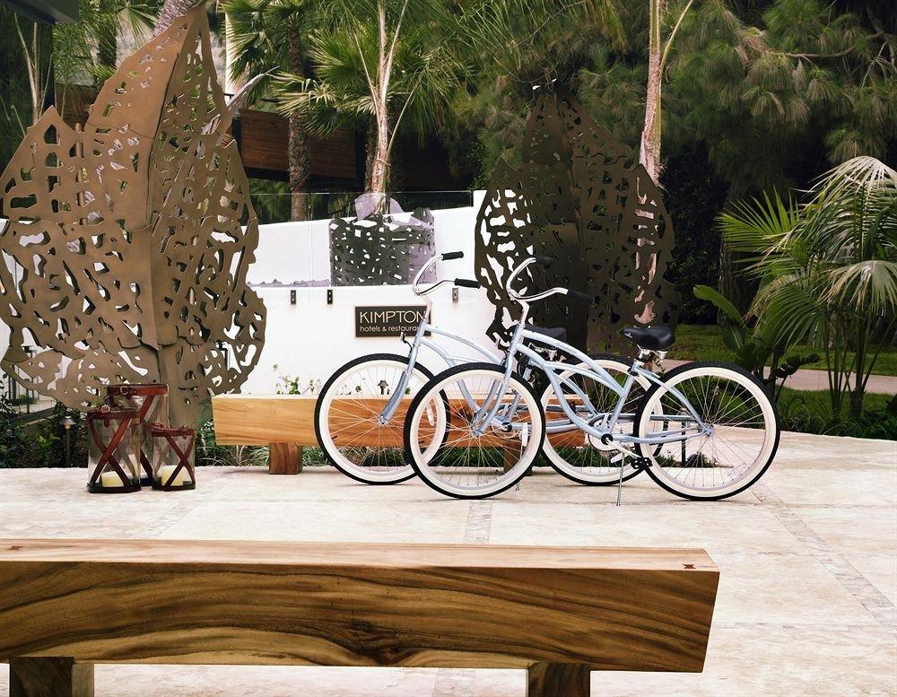 Beach tree outdoor ground art vehicle wood