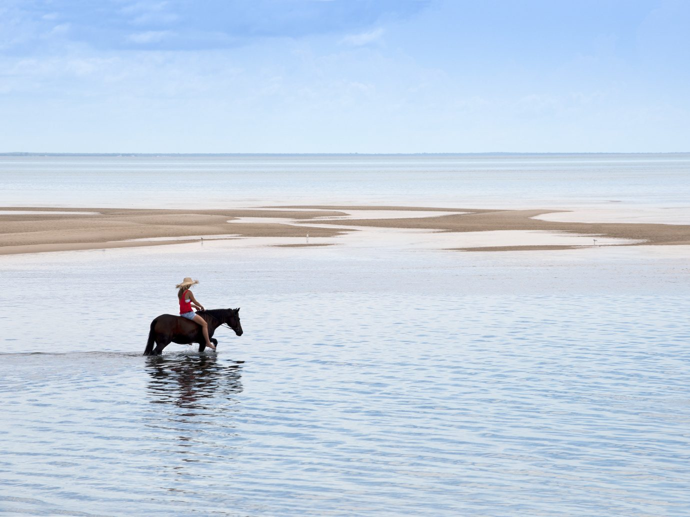 Trip Ideas water outdoor sky Dog shore Sea body of water horizon Beach Ocean Coast vacation Lake bay sand swimming