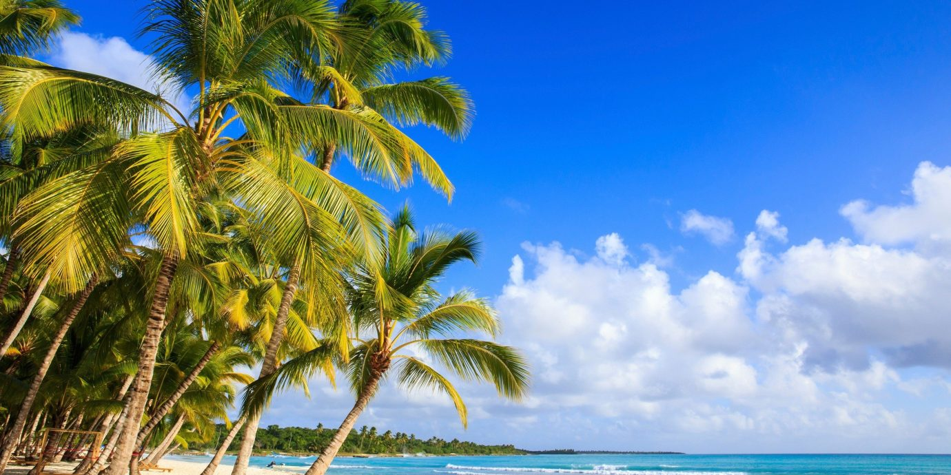 Trip Ideas sky outdoor tree Beach water palm body of water caribbean Sea Ocean shore vacation palm family Coast tropics arecales woody plant sunlight bay Island plant sandy day