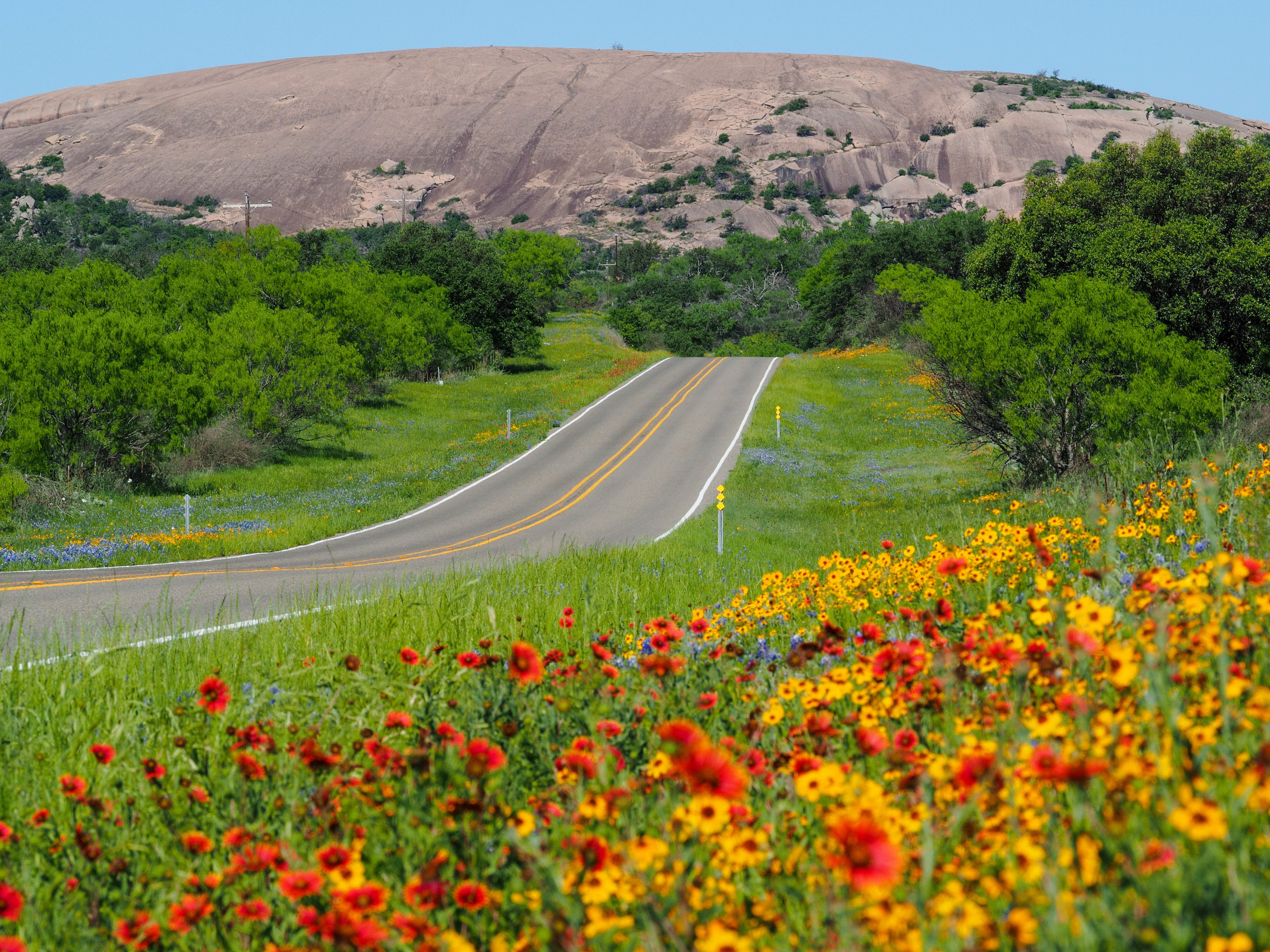 Road Trips Trip Ideas grass sky outdoor flower wildflower field vegetation plant road meadow rural area hill mountain landscape grassland agriculture tree crop mount scenery Farm prairie ecoregion pasture plantation lush surrounded