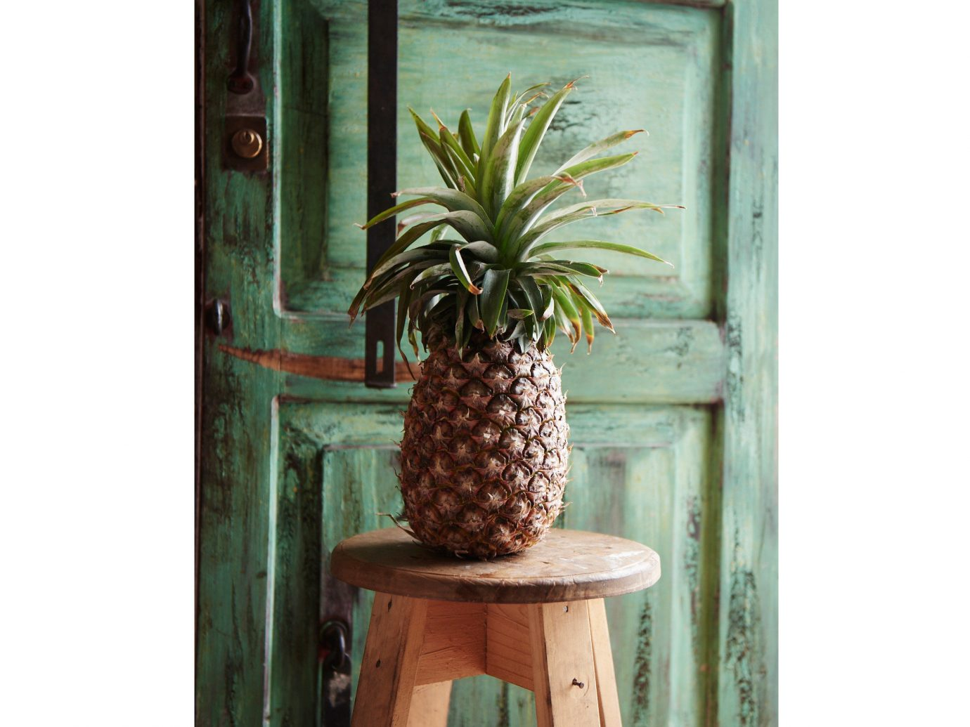 Trip Ideas plant window produce land plant arecales food pineapple fruit flowering plant carving bromeliaceae