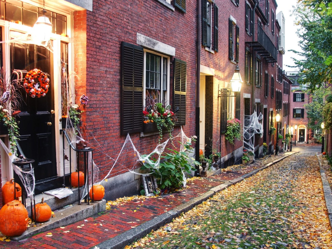 Offbeat building outdoor road sidewalk way Town neighbourhood street urban area human settlement alley autumn Courtyard flower yard