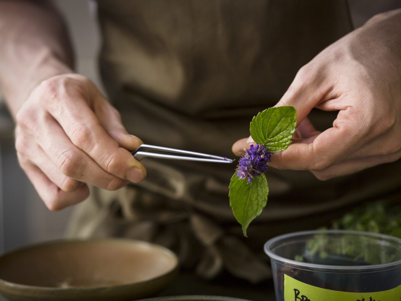 person indoor food plant produce flower hand Drink beverage sense baking preparing tableware bowl