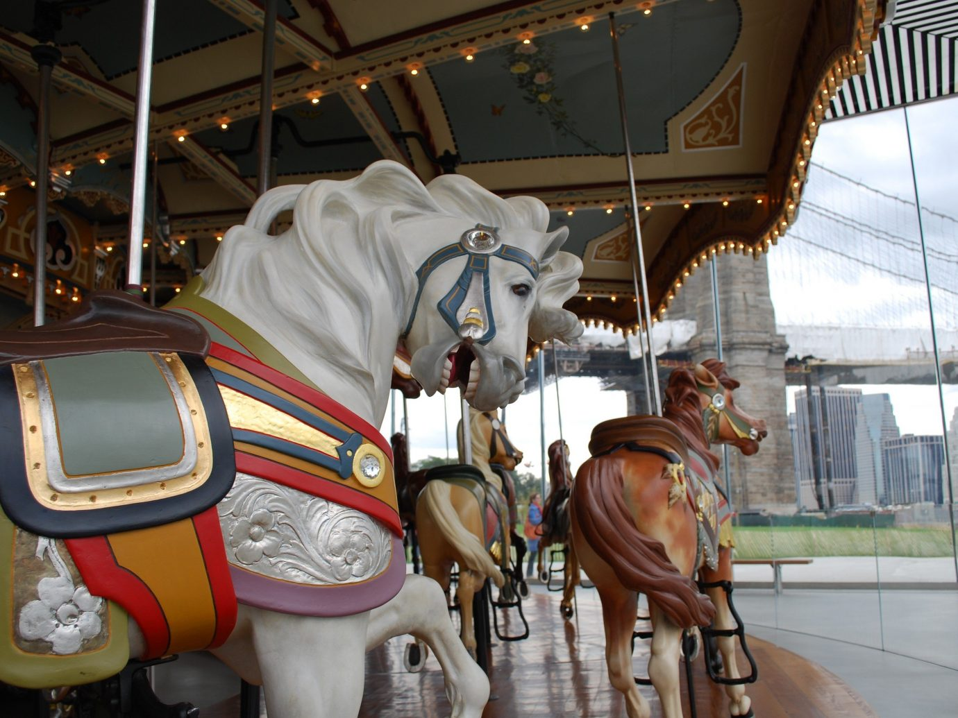 Trip Ideas amusement ride Carousel amusement park horse indoor tourist attraction horse like mammal park recreation horse harness